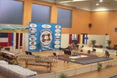 2008. gada Eiropas čempionāts Talsos